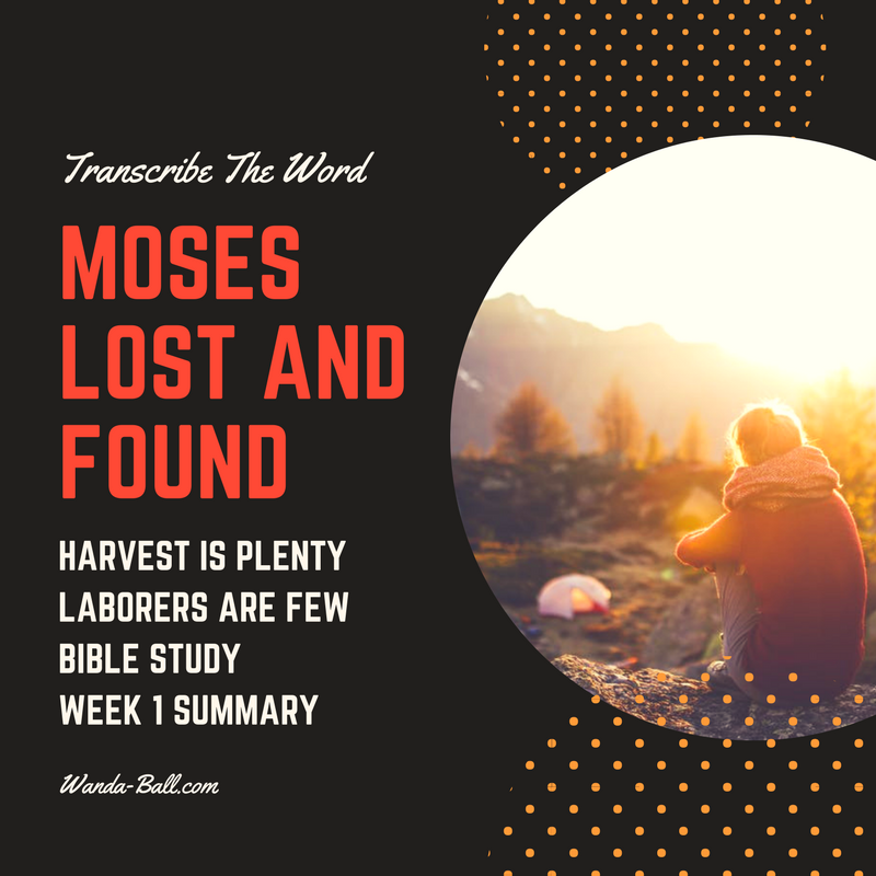 Moses lost and found week 1 summary